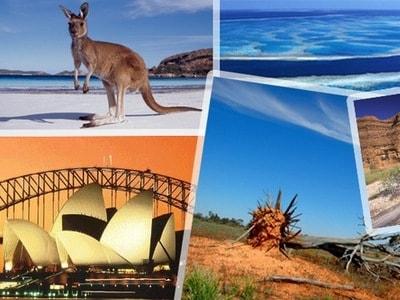 Опасные животные в Австралии