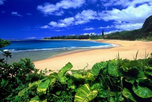 Каунаоа, Гавайи