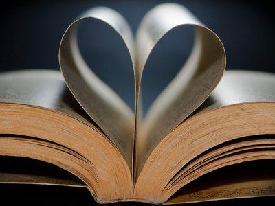 Лучшие любовные роман 2013 года