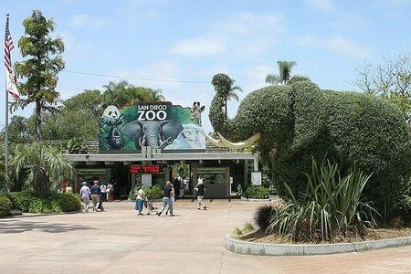 Зоопарк Сан-Диего